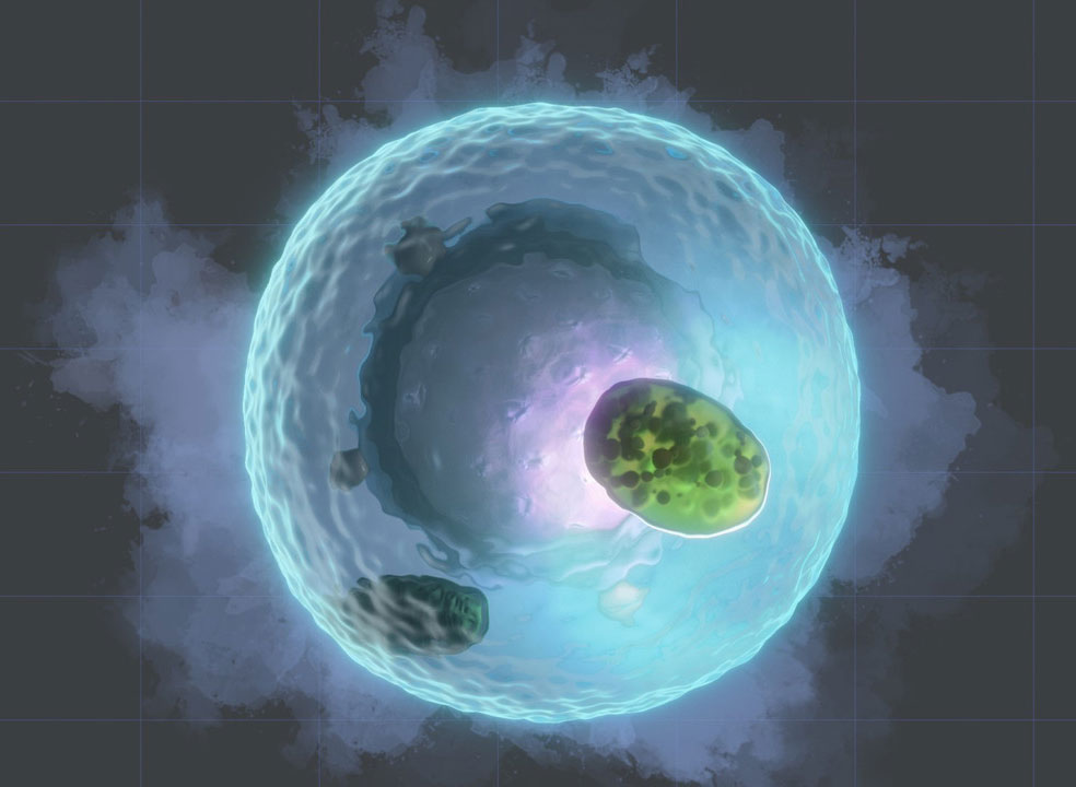 The Lysosome is an Underexploited Cellular Orchestrator
